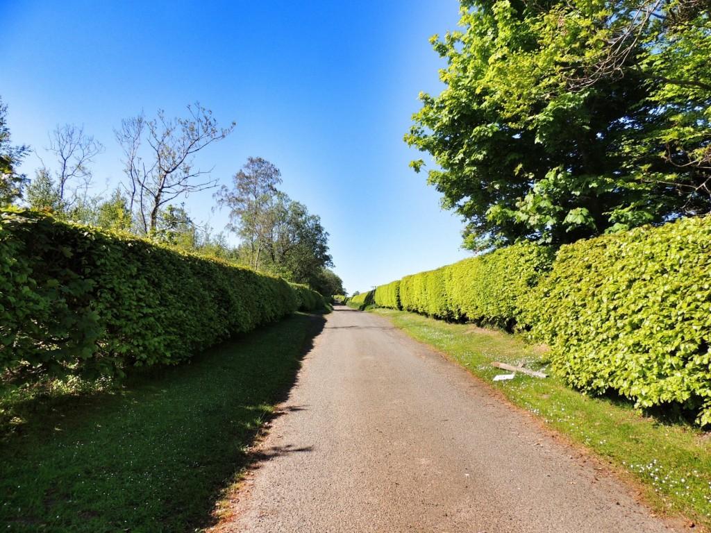Fala Moor road begins...
