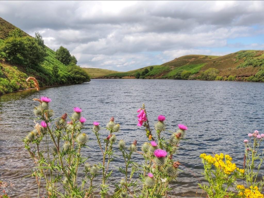 Lammerlock Reservoir
