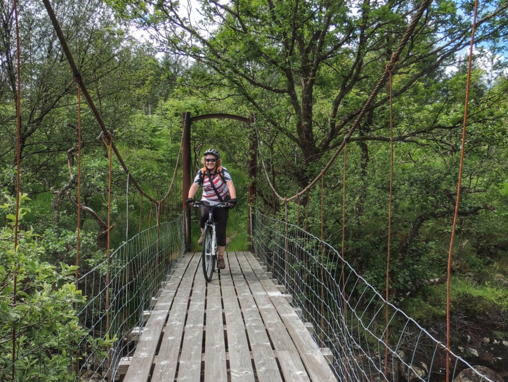 Crossing the bridge to Dail